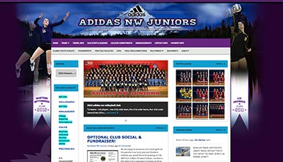 Adidas Volleyball Club